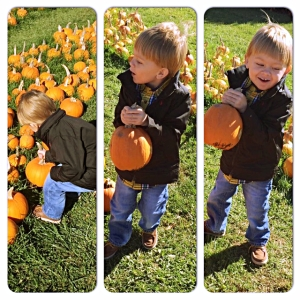 Liam at the pumpkin patch.