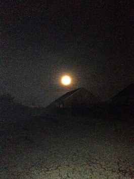 Beautiful full moon right above my house.