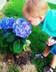 Stop and Smell theFlowers
