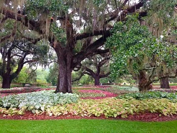 Beautiful Brookgreen Gardens, SC